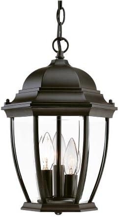 Acclaim 5036BK Wexford Collection 3-Light Outdoor Light Fixture Hanging Lantern, Matte Black