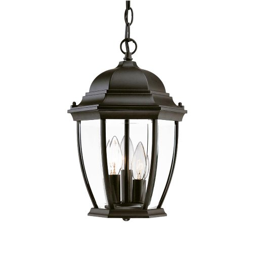 Acclaim 5036BK Wexford Collection 3-Light Outdoor Light Fixture Hanging Lantern, Matte Black (3 Lamp Pendant Collection Light)