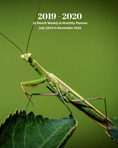 2019 - 2020 | 18 Month Weekly & Monthly Planner July 2019 to December 2020: Praying Mantis Insects Nature  Vol 26 Monthly Calendar with U.S./UK/ ... Holidays- Calendar in Review/Notes 8 x 10 in. -