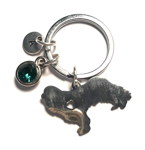 Cavalier King Charles Spaniel Keychain Silver Charm Pendant Keyring Initial Letter Birthstone Customized Gift