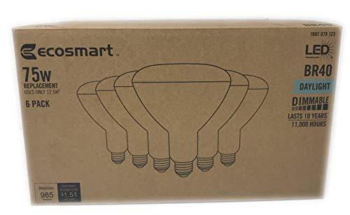 Ecosmart Cfl Flood Light in US - 6