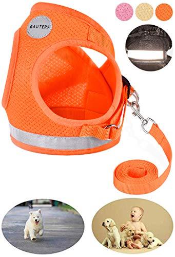 GAUTERF Pet Harnesses,Cat, Dog, Harnesses Leashes Pulling, Kitten Puppy Small Pet Adjustable Soft Net Reflective Pet Harness Leash Set (Medium, Orange)