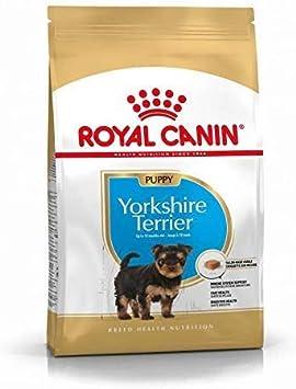 Royal Canin C-08592 S.N. Yorkshire Junior/Puppy - 1.5 Kg