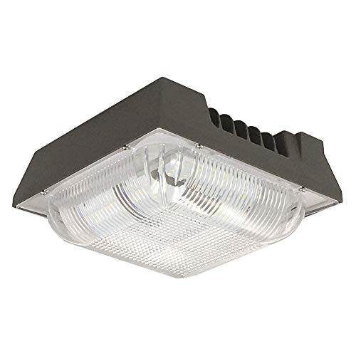 """Zip-LED Canopy Light in Bronze and Clear, 12.4"""" Square, 120W 5000K Daylight White 13,450 Lumen, Non-Dimmable, Wet Location IP65"""