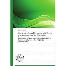 Compression d'images Météosat par ondelettes et fractales: Présentation d'algorithmes de compression  et  leurs applications sur des images de Télédétection