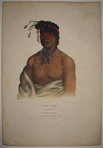 Wesh Cubb or the Sweet: A Chippeway Chief