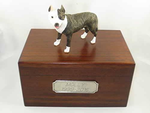 Beautiful Paulownia Medium Wooden Urn with Brindle Pit Bull Terrier Figurine & Pewter Personalized Engraving (Bull Pit Box Keepsake)