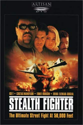 (Stealth Fighter)