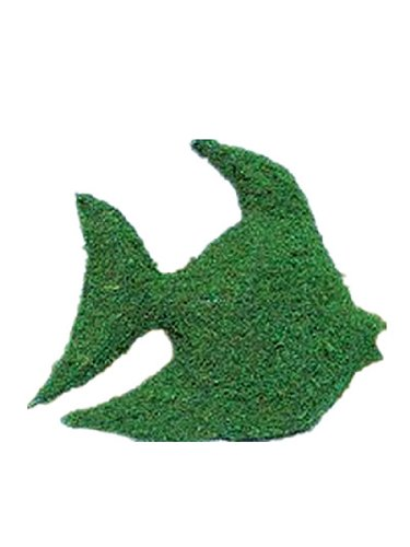 Fish 32 inches high x 27 inches wide x 10 inches diameter Indoor Outdoor Hand Wired Animal Topiary Frame Structure Filled With Moss