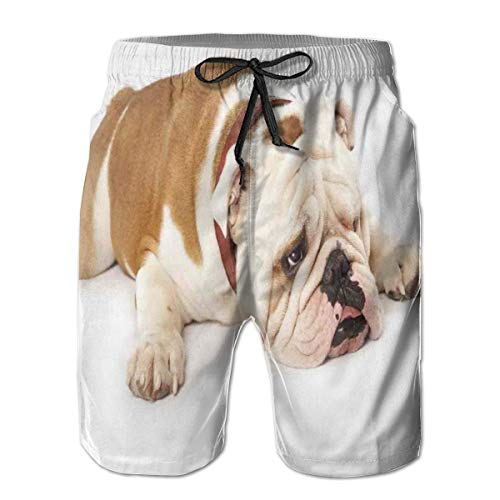 Men Swim Trunks Beach Shorts,Sad and Tired Bulldog Laying Down European Pure Breed Animal Photography L