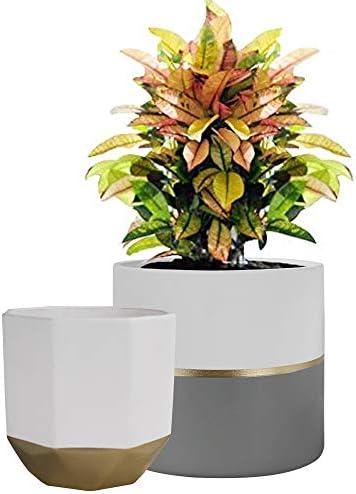 Vasi per Piante Set 2 Vaso da Fiori in Ceramica 16,5 x 15 cm per Herb Succulent Interni Esterni Balcony Giardino Fioriera Decor Regalo per Natale