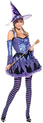 Be Wicked Gypsy Witch Costume, Purple/Blue, Medium/Large