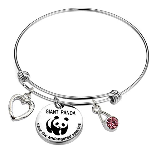 YOYONY Giant Panda-Save The Endangered Species Series-Inspirational/Love/Positive Quotes/Thankful/Beauty/Praise/Religious/Meaningful Wire Charm Bracelets. (Giant Panda-Save The Endangered Species)