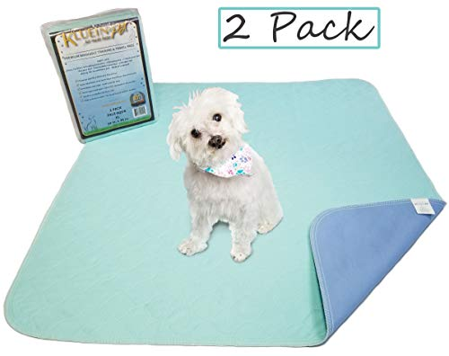 Kluein Pet Washable Pee Pads for Dogs & Puppies 2 Pack XL 34