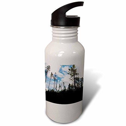 3dRose Jos Fauxtographee- Yellowstone Trees - Trees in Yellowstone shot upward toward the sky - Flip Straw 21oz Water Bottle (wb_273461_2) (Park Upward Holiday)