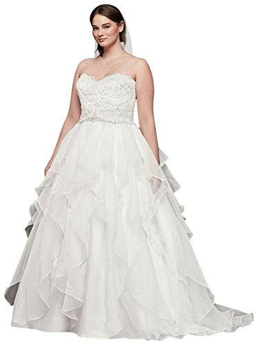 David's Bridal Lace and Organza Plus Size Ball Gown Wedding Dress Style 9WG3830