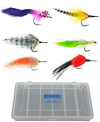Tarpon Saltwater Fly Fishing Fly Collection: 6 Flies + Fly Box
