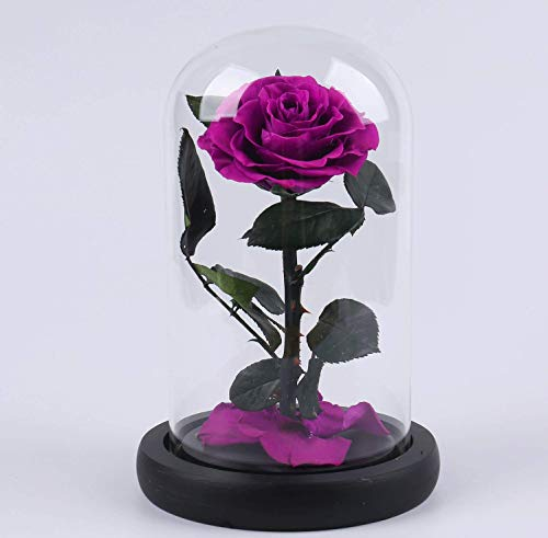 Preserved Fresh Flower,Enchanted Rose,Natural Eternal Life Rose in Glass Dome Cover with Gift Box for Valentine's Day, Mother's Day, Anniversary, Birthday, wedding (purple)