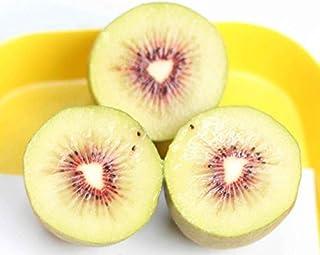 Pinkdose La promozione delle Piante in Vaso di Kiwi mescola L'Albero Bello Melone di Verdure dei Bonsai 100 pc/Lotto Giardino Domestico Trasporto Libero: 1