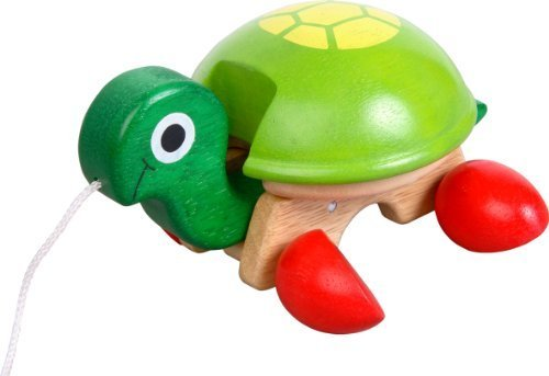 Voila Pull-Along Pet, Tortoise by The Sales Partnership Distributors - Sale Tortoise