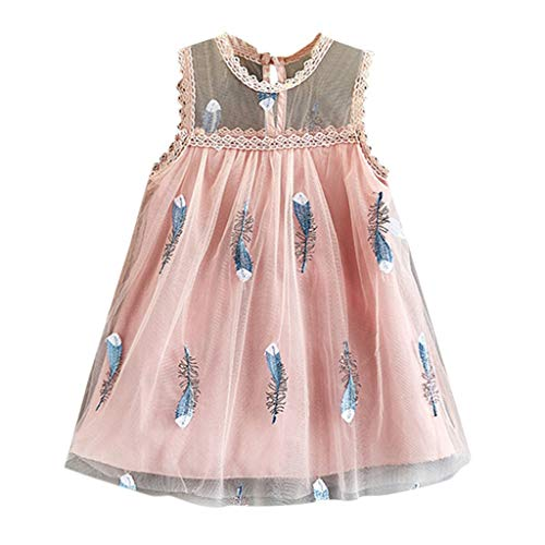 Toddler Baby Girl Princess Dress Sveless Lace A-Line Tiered Tutu Tulle Flower Girl Dress Clothes 18M-6T Pink]()
