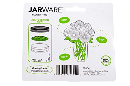 Flower Frog Jarware, 2-Pack