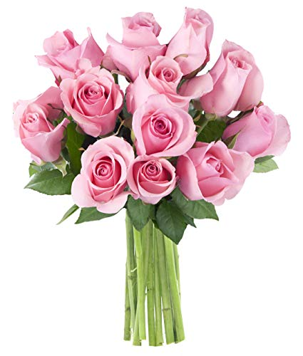 (Will Deliver by Valentine's Day: Pink Sugar Roses (Dozen) - Without Vase)