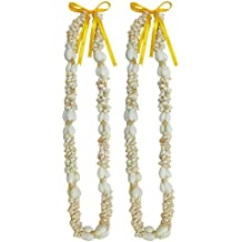TROPICAL Deluxe Heavy Shell Lei - Pack of 2 Leis