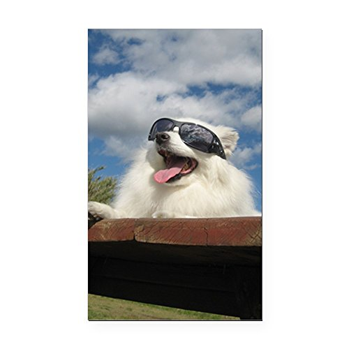 (CafePress - American Eskimo Dog Rectangle Car Magnet - Rectangle Car Magnet, Magnetic Bumper)