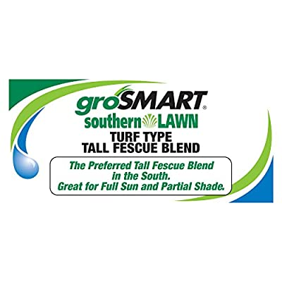 southernLAWN Three-Way Blend Premium Blue Tag Certified Turf Type Tall Fescue, 25 Pound Bag : Garden & Outdoor