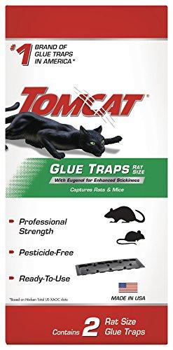 (Tomcat 362810 Rat Glue Trap with Eugenol - Pack of 12)