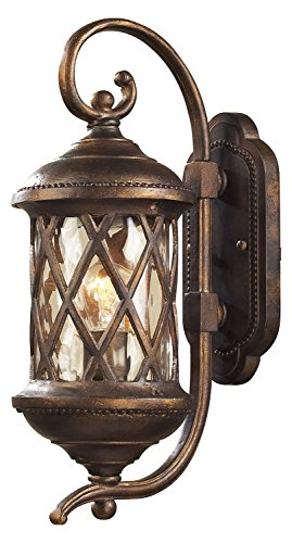 Barrington Gate 1 Light Outdoor Sconce in Hazlenut Bronze and Designer Water Glass
