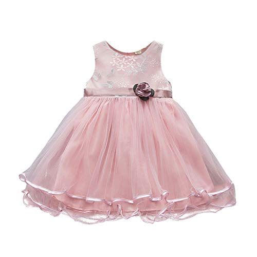 - iZZZHH Toddler Baby Kids Girls Flowers Tulle Dress Princess Dresses Party Dress Clothes Cool Summer Young Girl Dress (100, Pink)