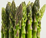 Asparagus Mary Washington Great Heirloom Vegetable - Bulk 2,000 Seeds