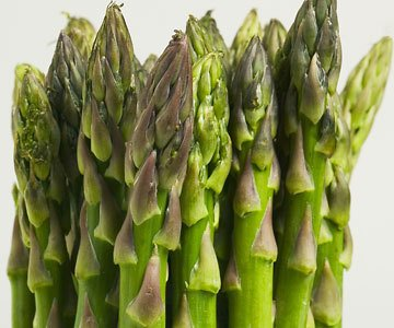 Asparagus Mary Washington Great Heirloom Vegetable By Seed Kingdom BULK 2,000 Seeds by seed kingdom