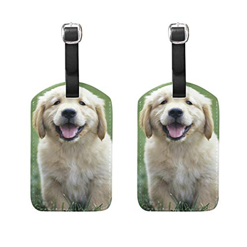 Luggage Tags Golden Retriever Puppies Picture Mens Tag Holder Kids Bag Labels Traveling Accessories Set of 2