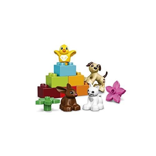 Lego DUPLO - Les animaux de compagnie 10838 - Jeu de Construction