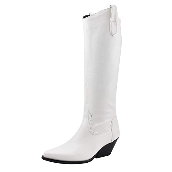 ZARLLE Zapatos de Tacón de Mujer,Botas hasta Las Rodillas ...