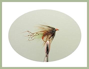 12 Pack Black SIght Bob Killers Gold Head Buzzer Fly Mixed 10//12//14 Fishing
