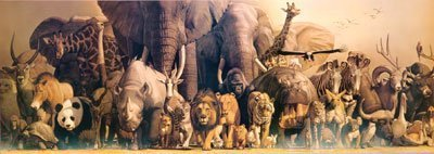 (13x36) Wild Animal Panorama Poster (Panorama Laminated Poster)