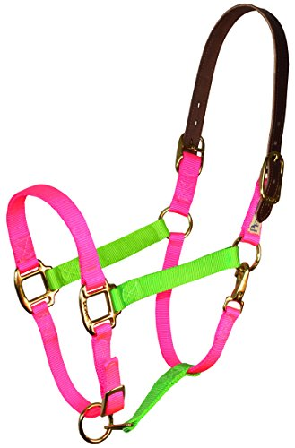 Perri's Color Vision Halter Horse Lime Green/Hot Pink Nylon Safety Halter