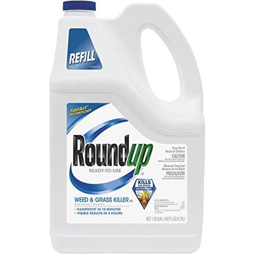 Roundup Weed & Grass Killer RTU Plus Pump 'N Go Sprayer