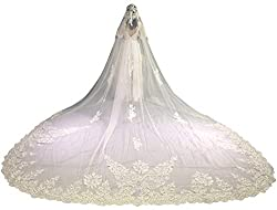 Faiokaver Wedding Veils for Bride Light Champagne 1 Tier Floral Lace Long Cathedral with Comb