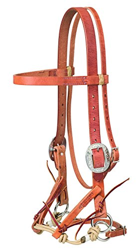 Weaver Leather Justin Dunn Draft Bitless Bridle