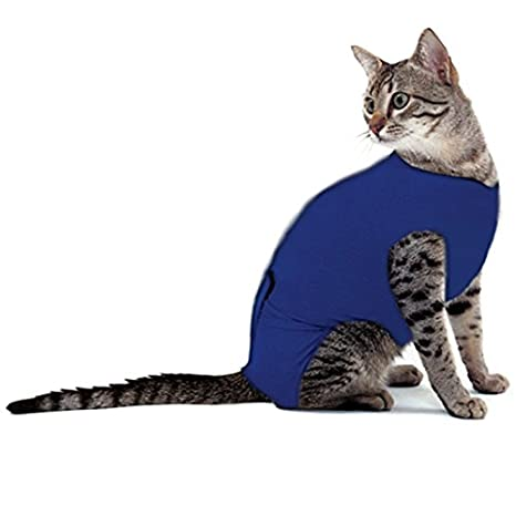 Chaleco de recuperación para gatos, reduce el miedo y la ansiedad y da apoyo emocional, para perros pequeños y gatos: Amazon.es: Productos para mascotas