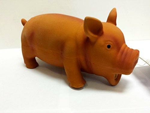 Coastal Pet - Rascals Latex Grunting Pig Dog Toy, 7.5