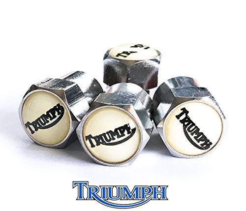 2 x TRIUMPH GT6 III LATE /& DOLOMITE SPRINT REAR WHEEL CYLINDERS GWC1121