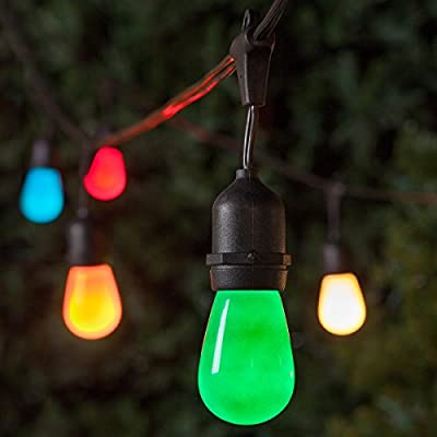 Wintergreen Lighting 54' Commercial Patio Stringer, Black Wire with 24 Suspended S14 Multicolor Party Lights, Outdoor String Lights, Wedding Lights, Holiday Lights, Patio String Lights