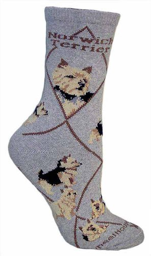 Norwich Terrier (Gray) Adult Cotton Puppy Dog Socks by WHD (9-11)