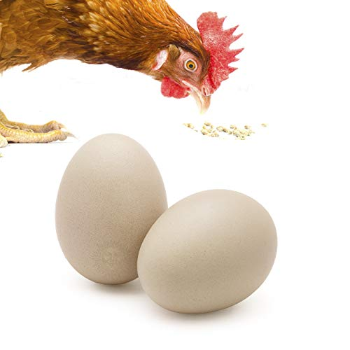 SunGrow 2 Ceramic Chicken Eggs - Natural Looking 2.75